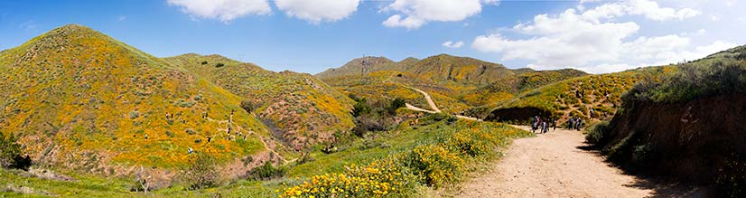 walker canyon panorama