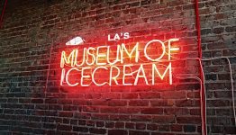 museum-of-ice-cream