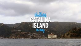 visiting catalina island