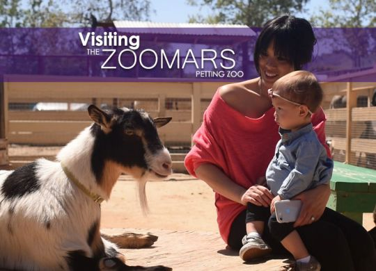 Zoomars Petting Zoo