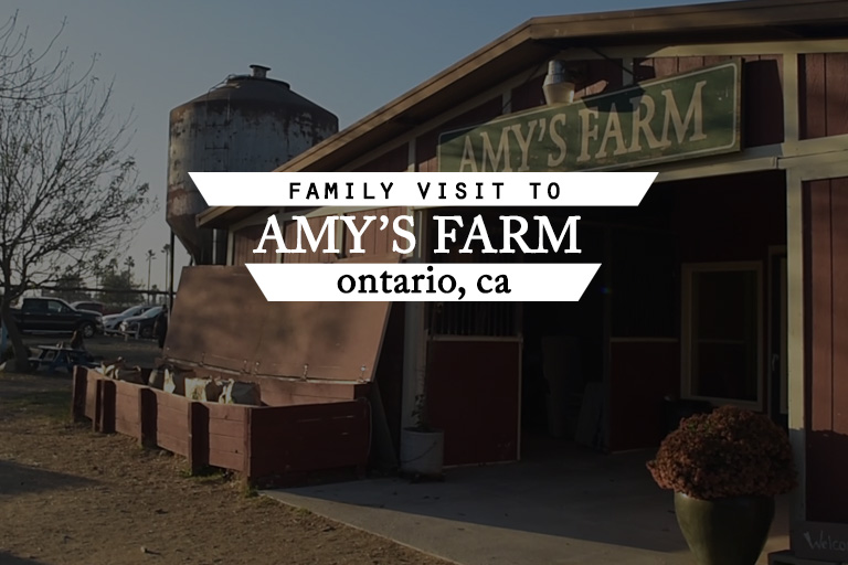 Visiting Amy's Farm | Califoreigners