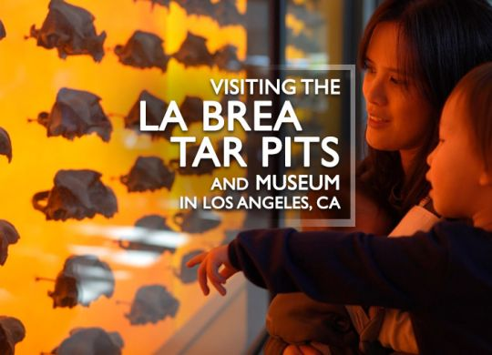 Visiting the La Brea Tar Pits and Museum