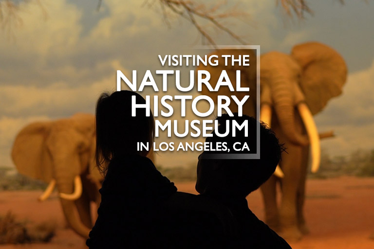 Visiting the Natural History Museum Los Angeles, CA