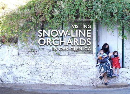 Snow-line Orchard