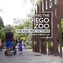San Diego Zoo For Kids October