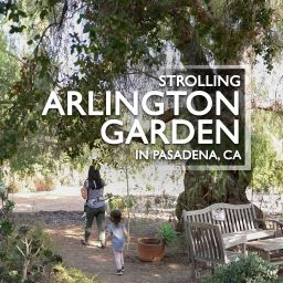 Visiting the Arlington Garden in Pasadena, CA