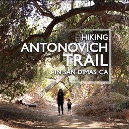 Antonovich Trail